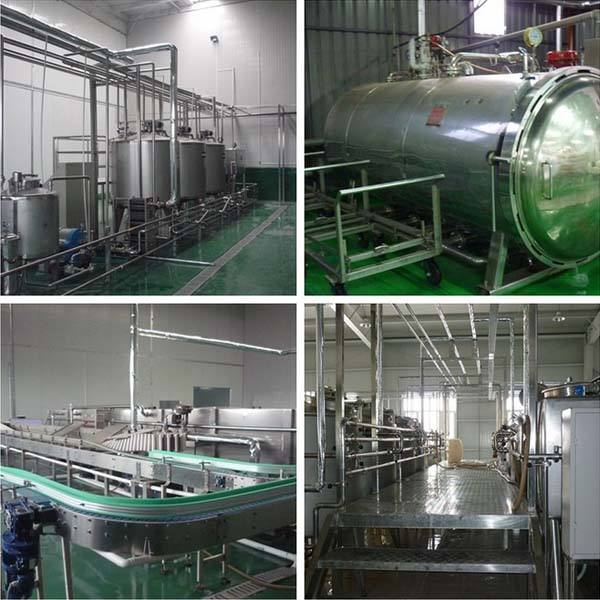 Automated Dairy Milk Production Line Packing Conveyor Systems
