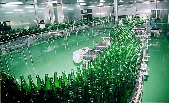 Glass Bottle Beer Production Line Packing Conveying Process 12 Months Warranty