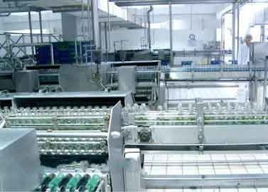 China Glass Bottled Beverage Processing Equipment Walnut / Peanut Milk Production Line supplier