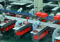 China Beef Split Meat Production Line / Processing Line 100-300 Cattle Per Hour Speed company