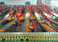 China Plastic Cup Canned Food Production Line , Fruit And Vegetable Processing Equipment company