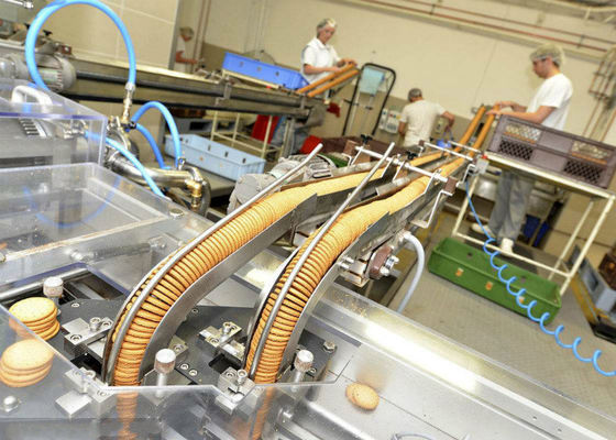 Cookie Biscuit Production Line Packaging Conveyor Systems Long Service Life