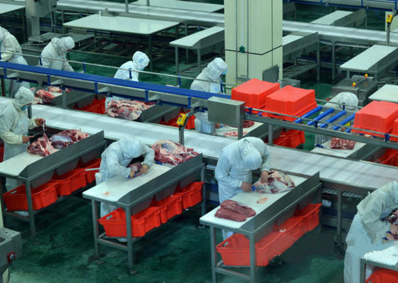 Beef Split Meat Production Line / Processing Line 100-300 Cattle Per Hour Speed